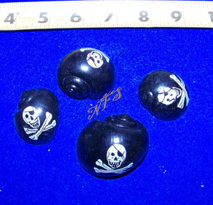 Pirate Painted Hermit Crab Shells
