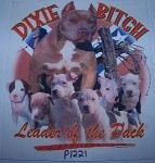 p1221 - Dixie Bitch Confederate Battle Flag Shirt