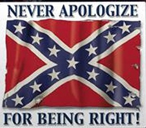 Never Apologize Confederate Battle Flag Window Sticker Decals