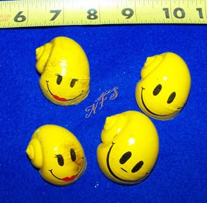 Smiley Faces Painted Hermit Crab Shells