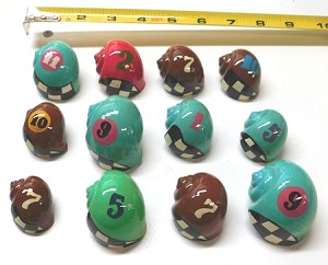 Painted Race Design Hermit Crab Shells